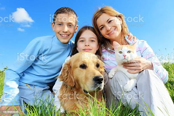 Happy family with cat and dog looking at camera picture id182895699?b=1&k=6&m=182895699&s=612x612&h=82sig4izbtiwy1g7uu bgsio3ckqx1ohcfldm cwejm=