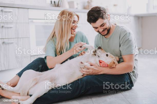 Happy family with contented golden retriever dog picture id1095983464?b=1&k=6&m=1095983464&s=612x612&h=75jze flce gp ol6dnvcuxs zeqorg1gbxrot6iddy=