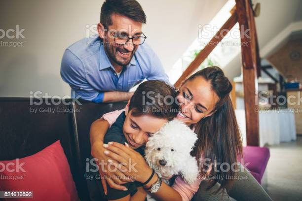 Happy family with dog at home picture id824616892?b=1&k=6&m=824616892&s=612x612&h=c6zfajovuhzyjmxtvw8qpb2 85 t3usilyrun7dxhvg=