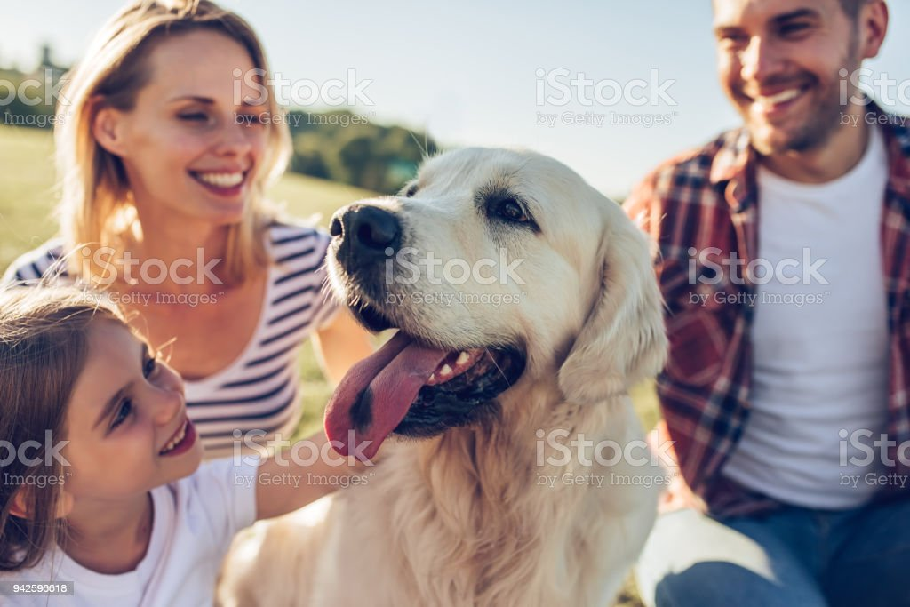 Happy family with dog stock photo