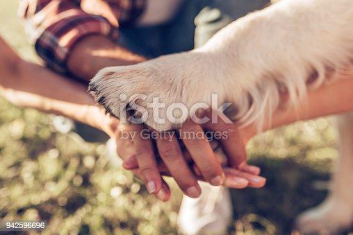 942596618 istock photo Happy family with dog 942596696