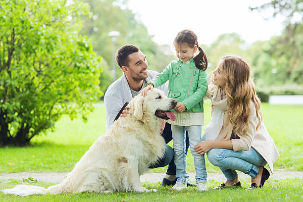 Happy family with labrador retriever dog in park picture id494642420?b=1&k=6&m=494642420&s=612x612&w=0&h=a6hiinxedzq fwapzl6p8mve9kukpfiw9l4n6zt klq=