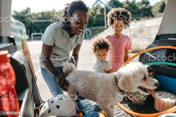 Happy Family With Their Pet Dog Packing Things In Car Trunk Stock Photo - Download Image Now