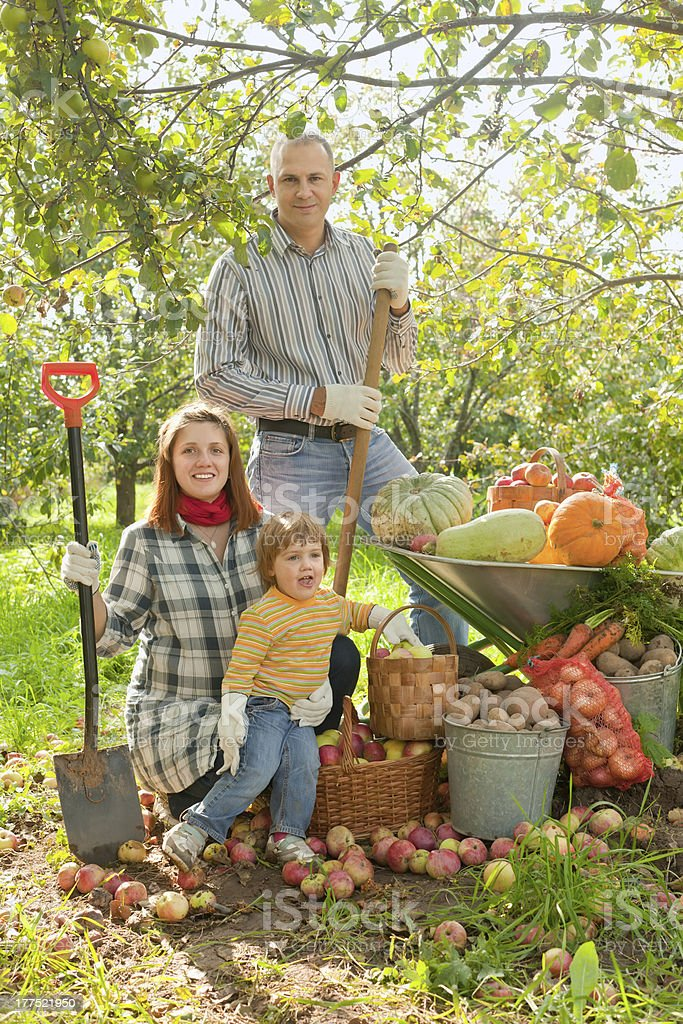 Happy  family with vegetables harvest royalty-free stock photo