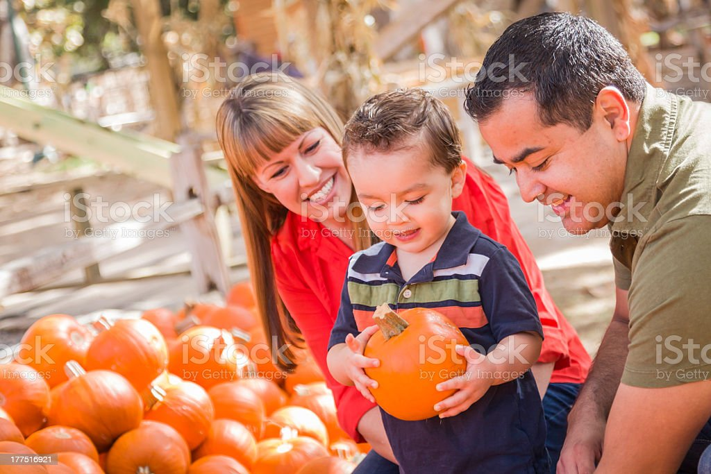 Happy family with young boy holding and choosing a pumpkin stock photo