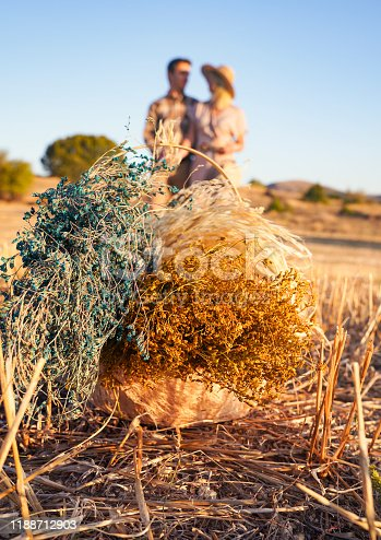 Happy family: woman and man dear on nature on autumn sunset. selected focus