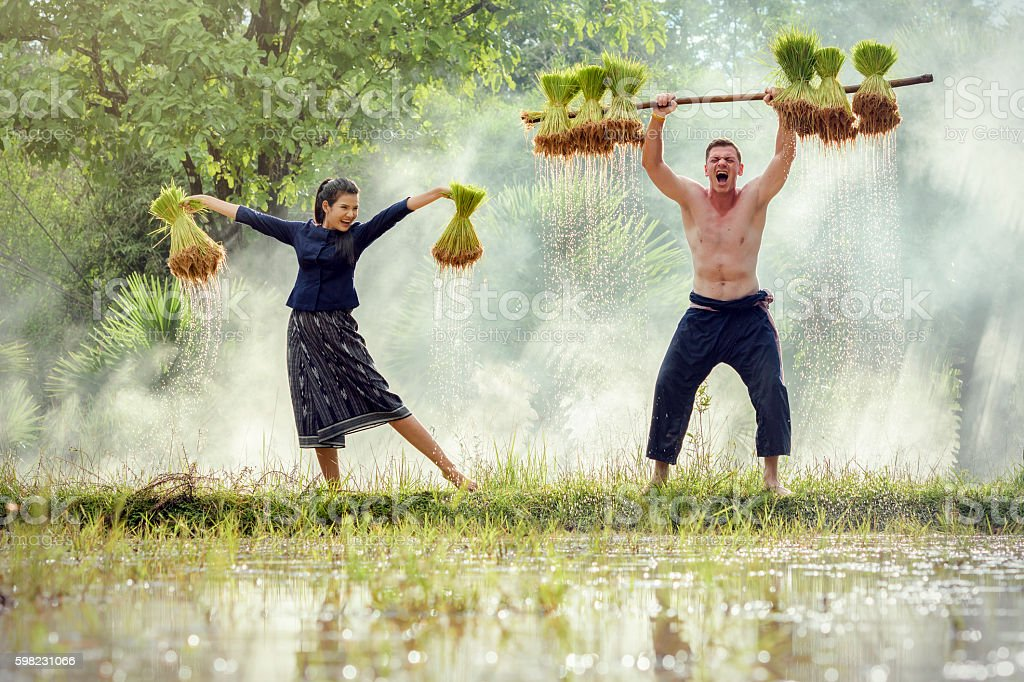 Feliz Farmer  foto royalty-free