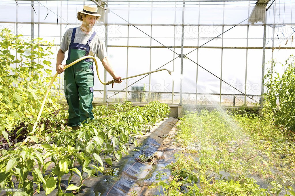 happy farmer serie royalty-free stock photo