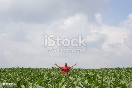 1094815168 istock photo Happy farmer standing at his abundant field of growing green corn plant with his arms outstretched 973213514