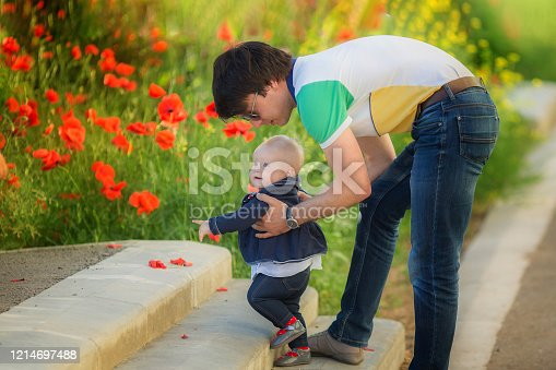 480122543 istock photo Happy father and child playing together on the poppy meadow. 1214697488