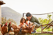 Happy father and daughter feeding hens at farm. Family is wearing casuals. They are spending leisure time on sunny day.