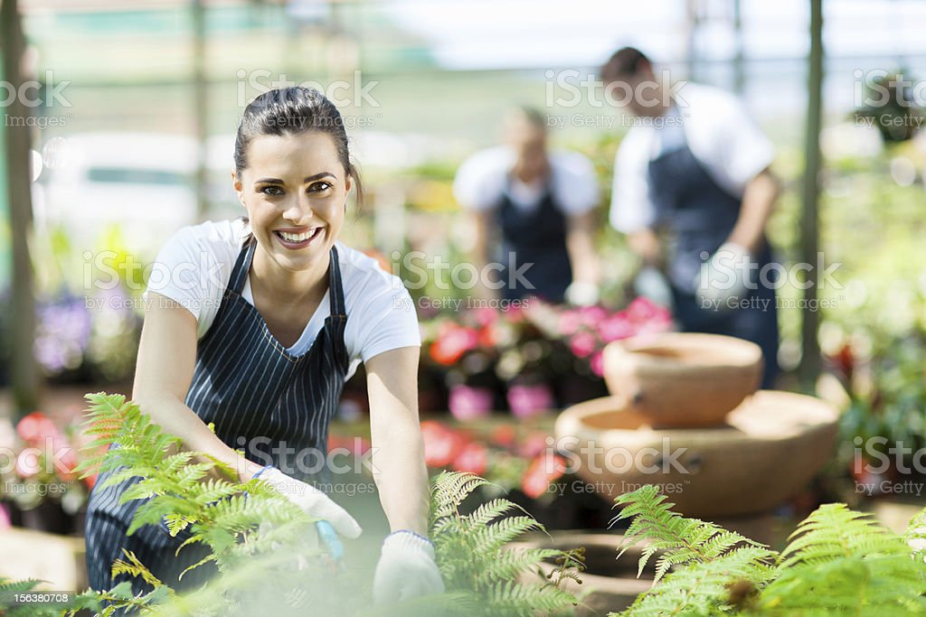 happy female nursery worker trimming plants stock photo