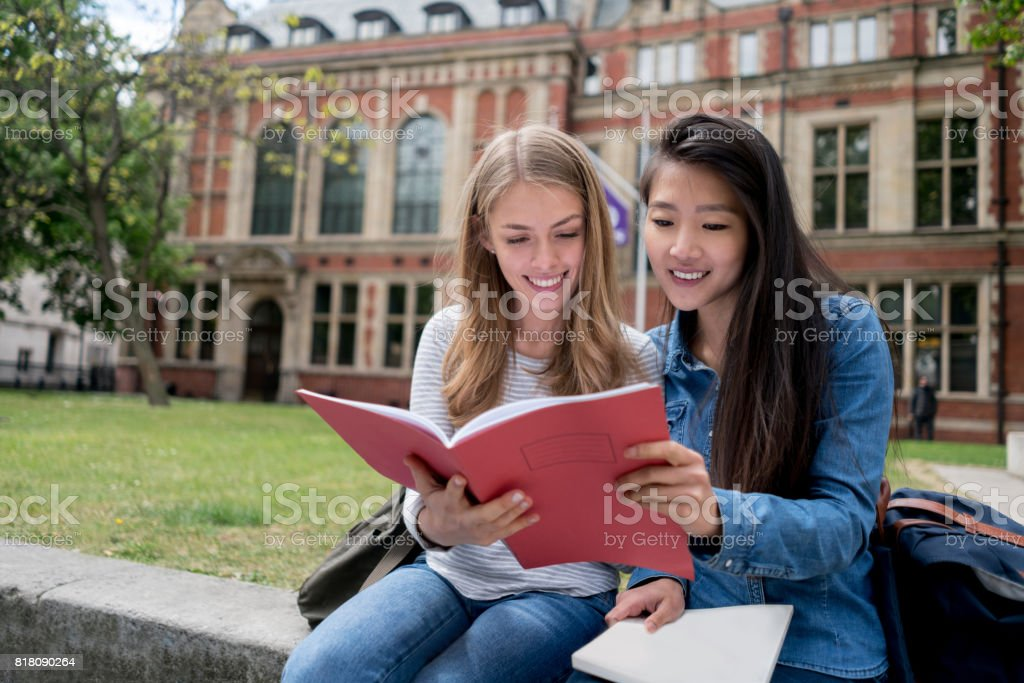 Happy female students studying outdoors stock photo