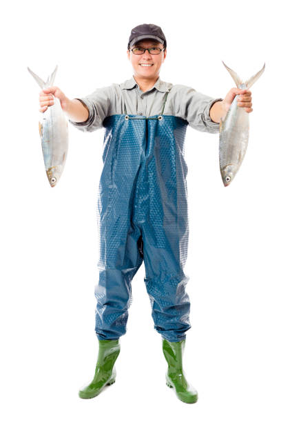 happy fisherman showing big fish isolated on white happy fisherman showing big fish isolated on white fisherman stock pictures, royalty-free photos & images