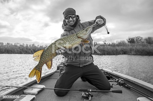 914030378 istock photo Happy fisherman with big pike fish trophy at the boat with fishing tackles 950583536