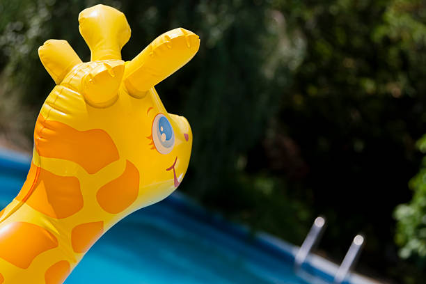happy floating toy and swimming pool - carolinemaryan stock pictures, royalty-free photos & images