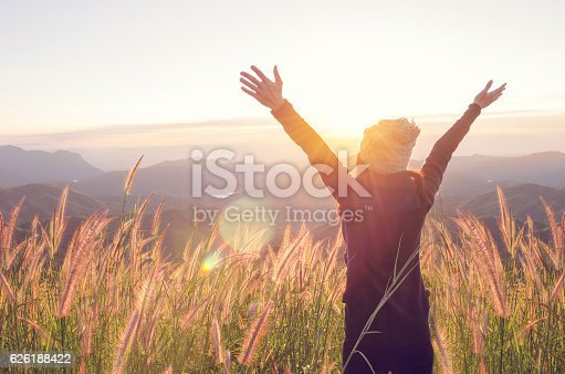 istock Happy Freedom in sunrise nature 626188422