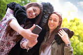 Two Happy friends and a Gorilla Taking a Photo with Mobile Phone