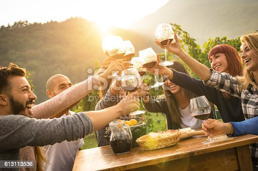 istock Happy friends having fun an drinking wine in autumn time 613113536