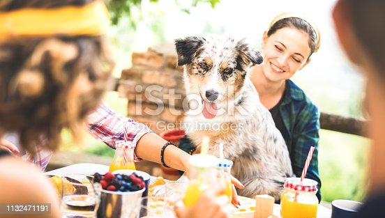 istock Happy friends having healthy pic nic breakfast at countryside farm house - Young people millennials with cute dog having fun together outdoors at garden party - Food and beverage lifestyle concept 1132471191