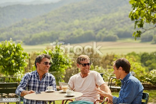 istock Happy friends talking while having tea in yard 800433732