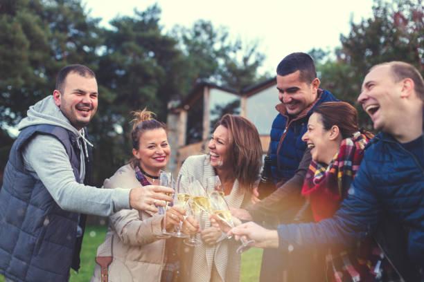 glücklich freunden anstoßen - frohes neues jahr stock-fotos und bilder