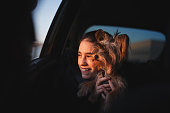 Happy girl and her Yorkshire Terrier dog looking out of a car window at orange sunset.  Selective focus stock photo.
