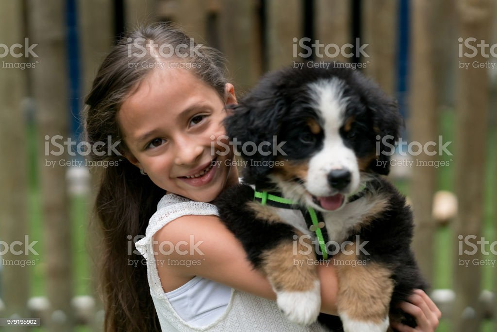 Happy girl holding a puppy stock photo