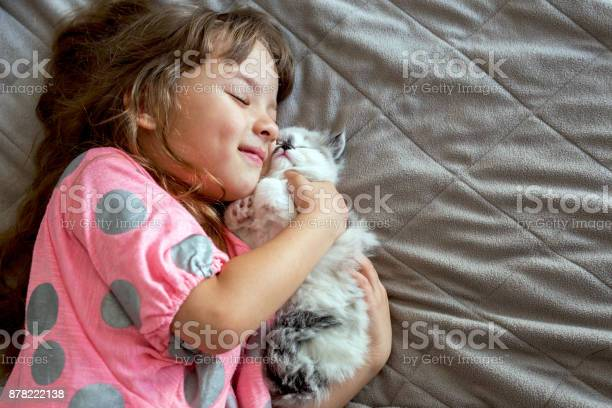 Happy girl hugging her persian kitten picture id878222138?b=1&k=6&m=878222138&s=612x612&h=jm3io nljiexocdwayzdmhcgd2ci2ooyjdm9ak sppu=