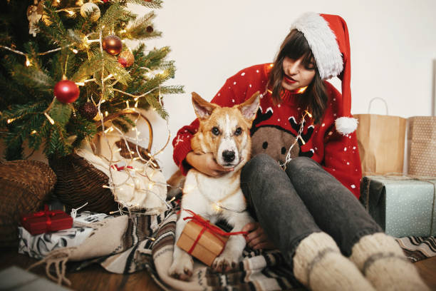 Happy Girl In Santa Hat Hugging With Cute Dog On Background Of Golden Beautiful Christmas Tree