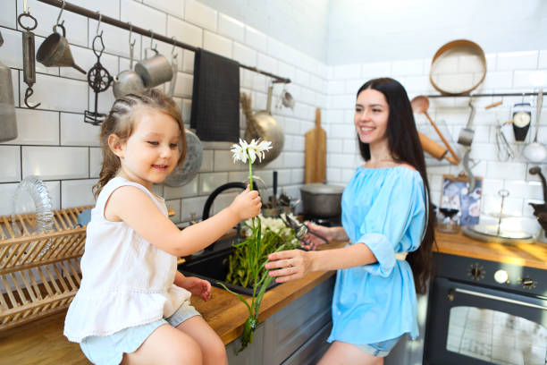 420 Daisy Kitchen Decor Stock Photos Pictures Royalty Free Images Istock