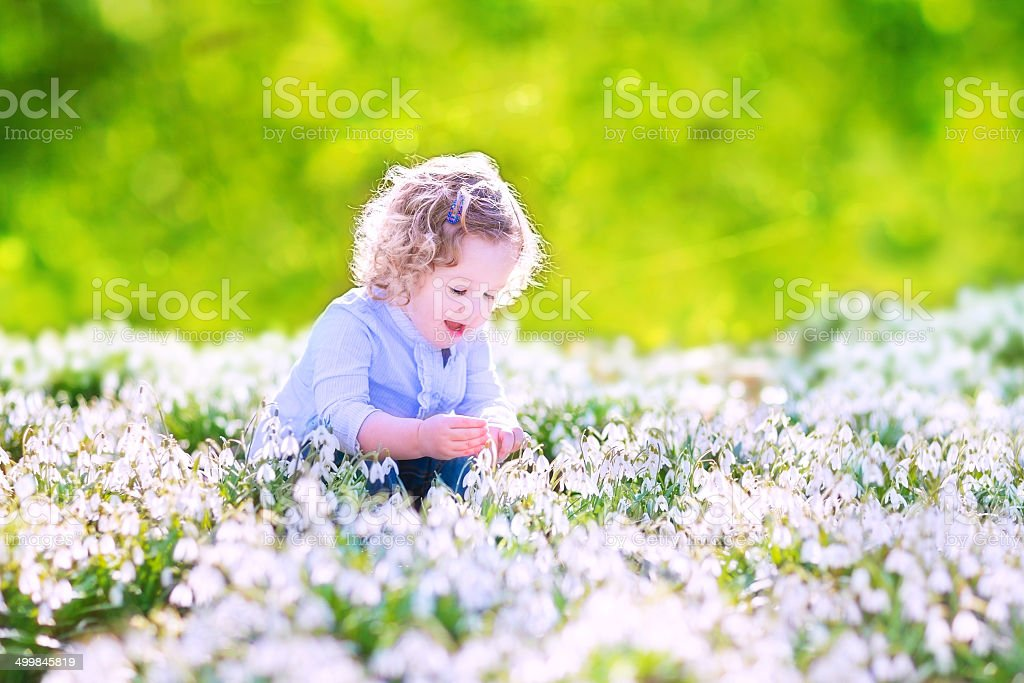 Happy girl playing with first spring flowers stock photo