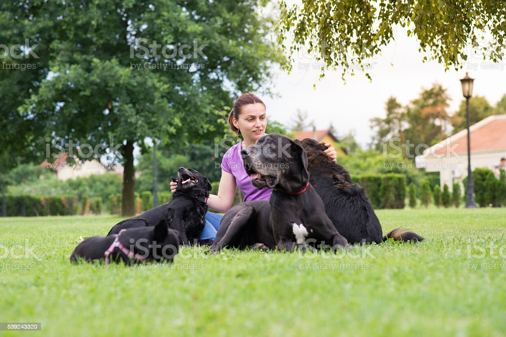 happy girl siting and enjoying with her dogs royalty-free stock photo