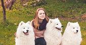 istock Happy girl walks with three Samoyed dogs 1048690534
