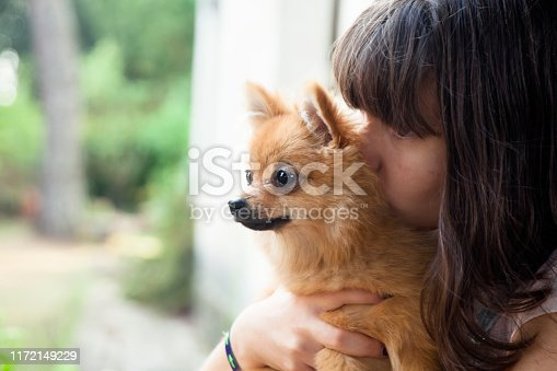 istock Happy girl with her little pomeranian 1172149229