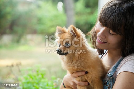 istock Happy girl with her little pomeranian 1172149254
