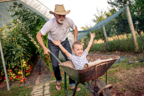 Happy grandfather and his grandson in garden stock photo