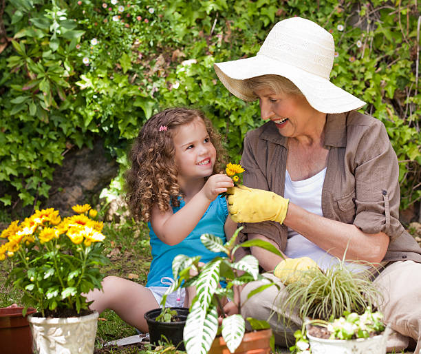 Happy grandmother with her granddaughter working in the garden stock photo