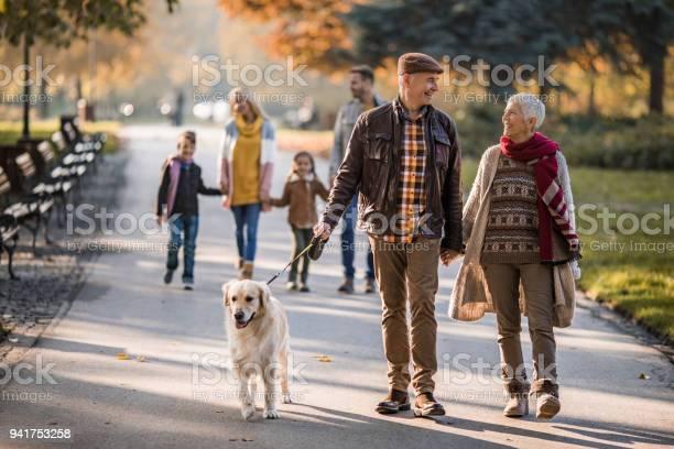 Happy grandparents talking while walking their dog at the park picture id941753258?b=1&k=6&m=941753258&s=612x612&h=x7iotr5lqdqviyqbeeerwrlxytldkveyvdpzetezr4s=