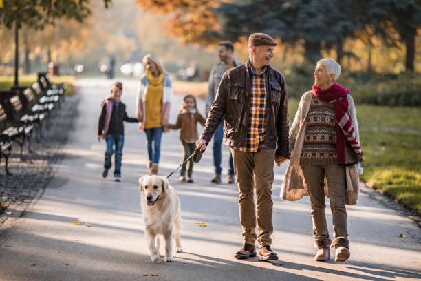 Happy grandparents talking while walking their dog at the park picture id941753258?b=1&k=6&m=941753258&s=612x612&w=0&h=j1rirdfjw3 d ero0gzzmqlbqln8mqcsgl1xox3wxpw=