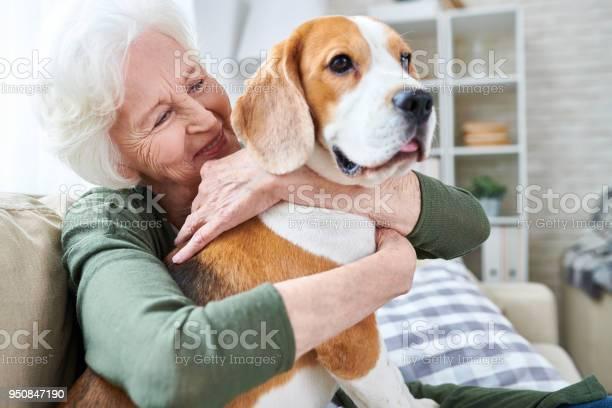 Happy granny loving her dog picture id950847190?b=1&k=6&m=950847190&s=612x612&h=7xb1n0t9vohmgho vloyoy5gt z4xgmhlf vfnf5wau=