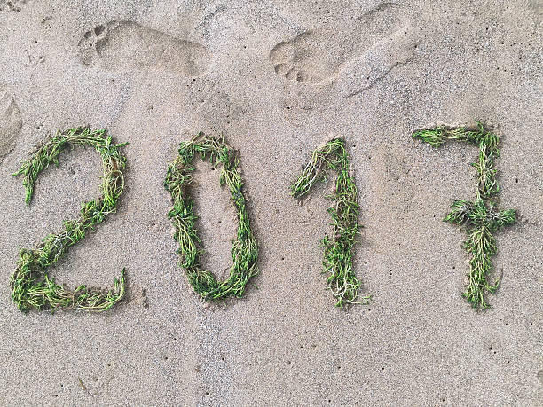 Happy green year 2017 A photo composition made with seaweeds on the sand welcoming the year 2017 antipollution stock pictures, royalty-free photos & images