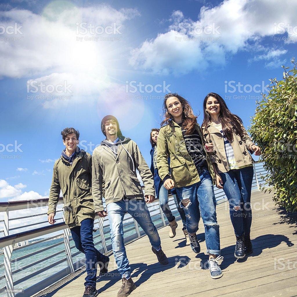 Happy group of friends royalty-free stock photo