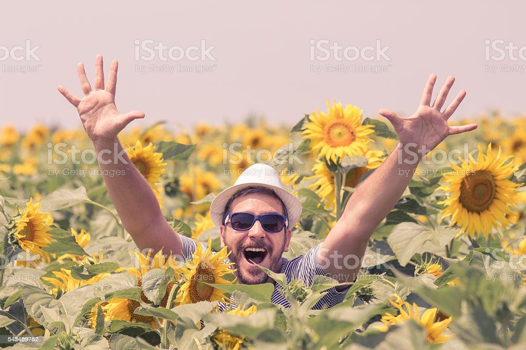 Happy guy in sunflowers field stock photo