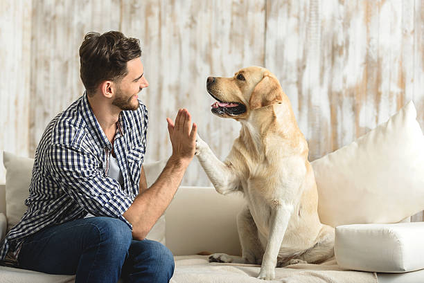 Happy guy sitting on a sofa and looking at dog picture id615074564?b=1&k=6&m=615074564&s=612x612&w=0&h=0nd5eijthaklrq4shz h94p ywvdlmuxfw yphy1tue=
