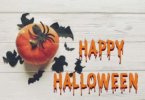Happy Halloween Text Flat Lay Pumpkin With Witch Ghost Bats And Spider Black Decorations On White Wooden Background Top View With Space For Text Seasonal Greetings - zdjęcia stockowe i więcej obrazów Czarownica