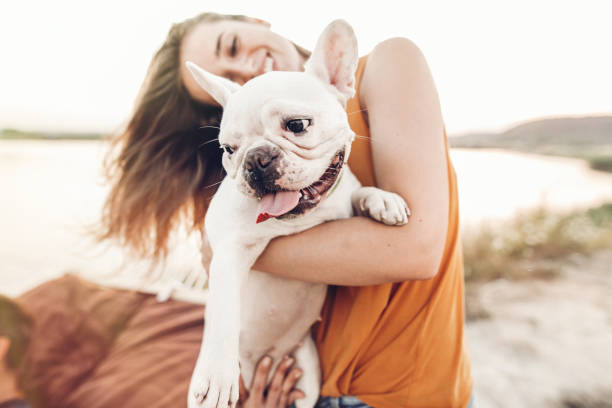 happy hipster woman playing with bulldog on the beach in sunset light, summer vacation. stylish girl with funny dog resting, hugging and having fun in sun, cute moments. space for text happy hipster woman playing with bulldog on the beach in sunset light, summer vacation. stylish girl with funny dog resting, hugging and having fun in sun, cute moments. space for text bulldog stock pictures, royalty-free photos & images