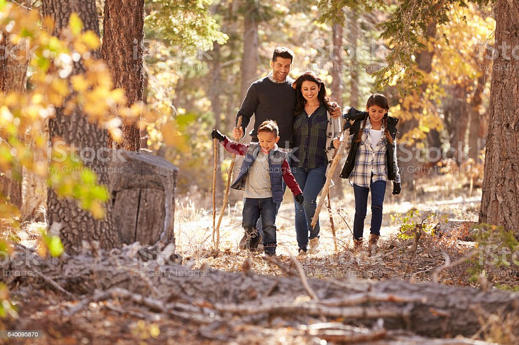 Happy Hispanic family with two children walking in a forest stock photo