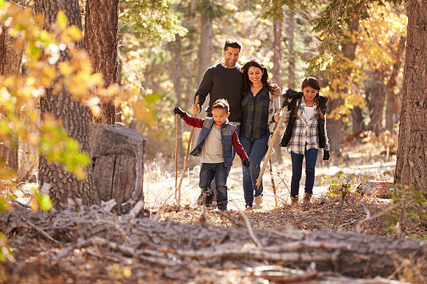 happy hispanic family with two children walking in a forest - hiking stock photos and pictures