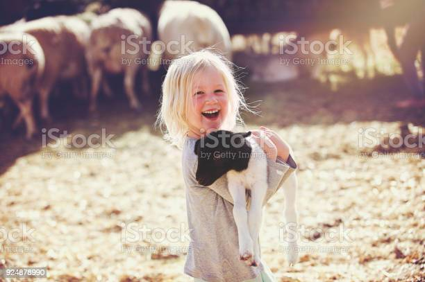 Happy holding lamb smiling girl sideways picture id924878990?b=1&k=6&m=924878990&s=612x612&h=kw 4zuxnvgepvkoyxmpyogmsmnxnxoig ahaqlwk3sc=
